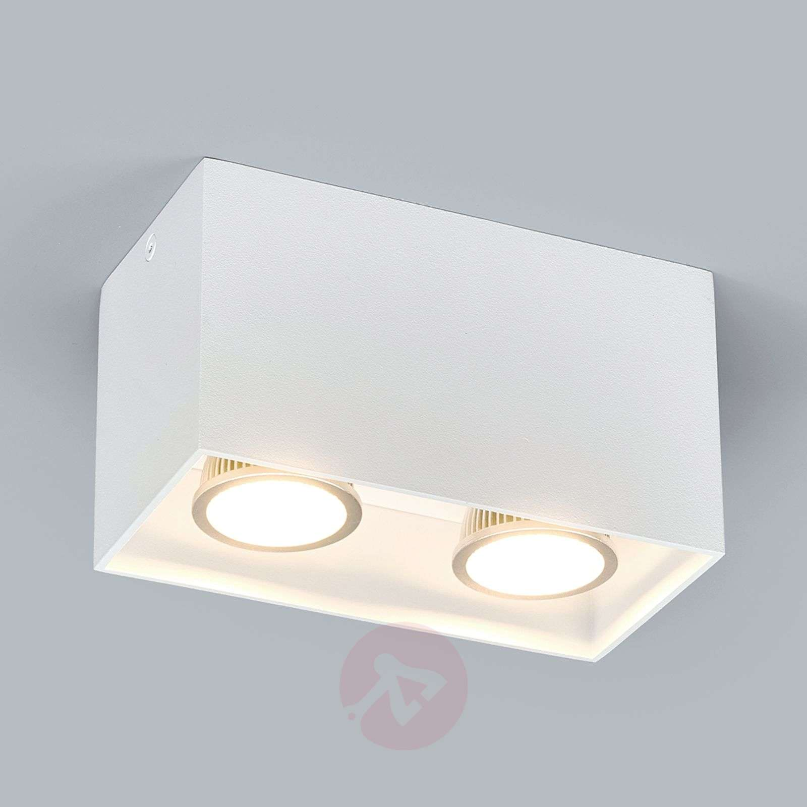 2 Bulb Surface Mounted Downlight Carson In White Lights