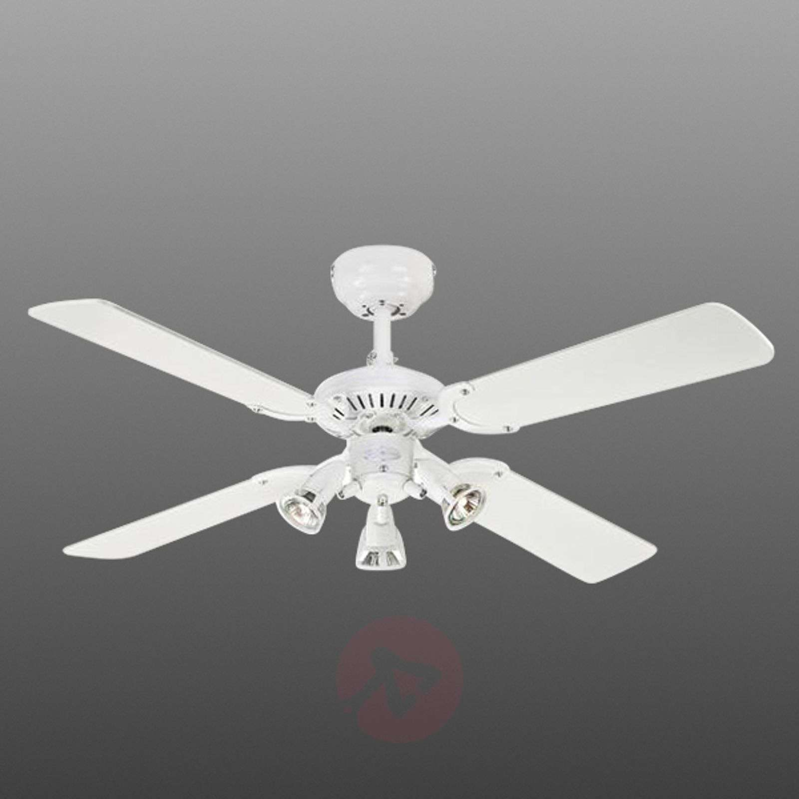 Ceiling Fan Princess Euro With 3 Bulbs 9602279 01