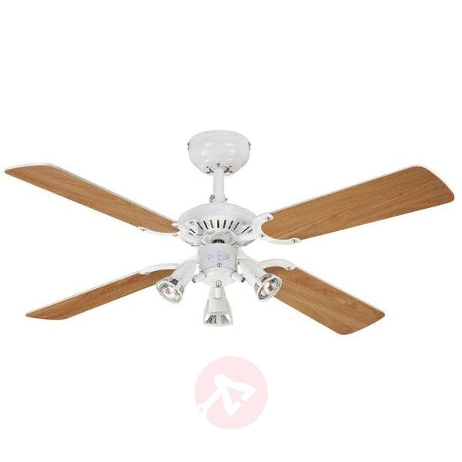 Ceiling fan princess euro with 3 bulbs 9602279 32g ceiling fan princess euro with 3 bulbs 9602279 01 aloadofball Gallery