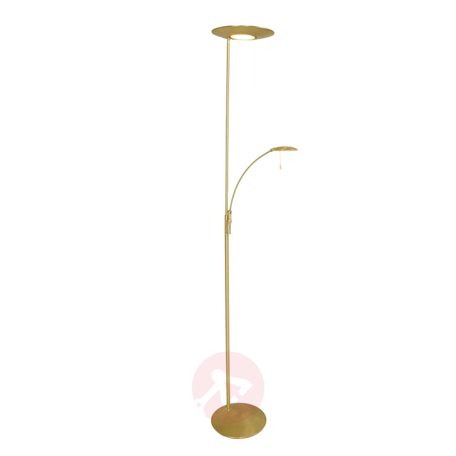 Dimmer and reading light led floor lamp zenith lights for Floor reading lamp with dimmer