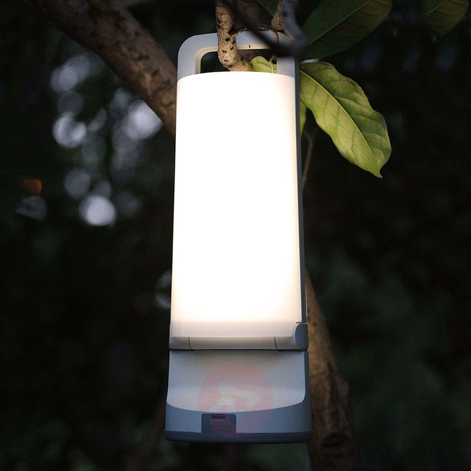 Dragonfly a solar table lamp for outdoors lights dragonfly a solar table lamp for outdoors 3006242 01 aloadofball Images