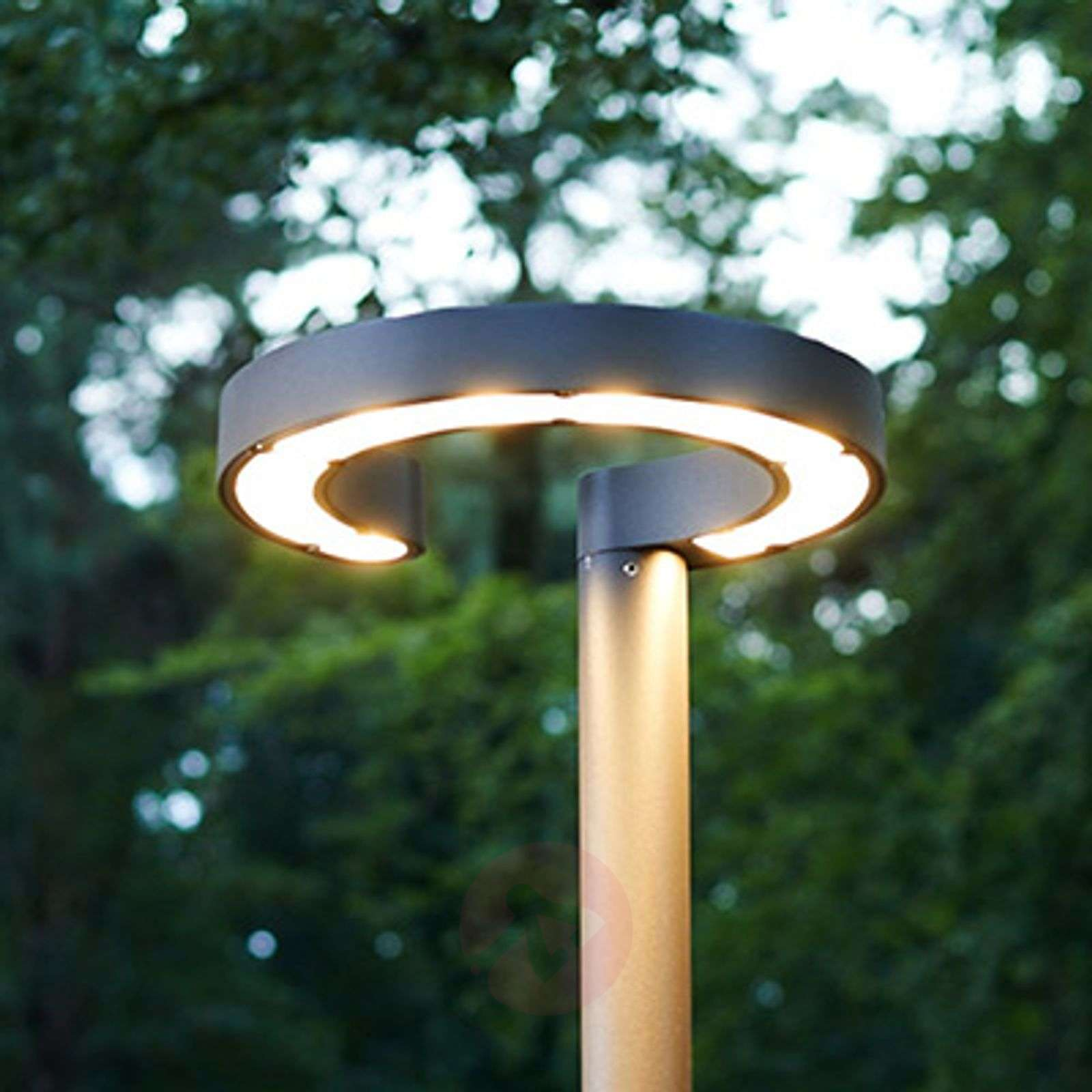 post outdoor lighting fixture fetching and lights pin