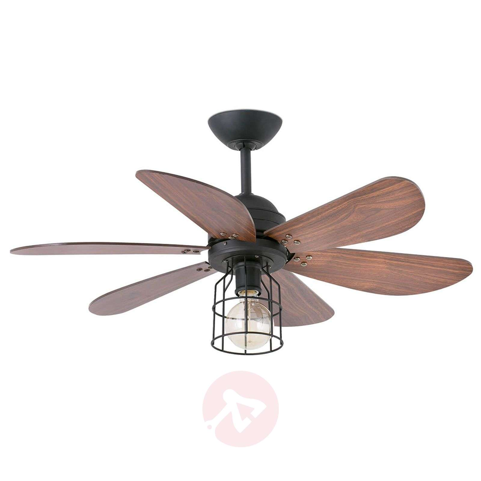 Chicago Lighting Company: Light With A Cage Design- Ceiling Fan Chicago
