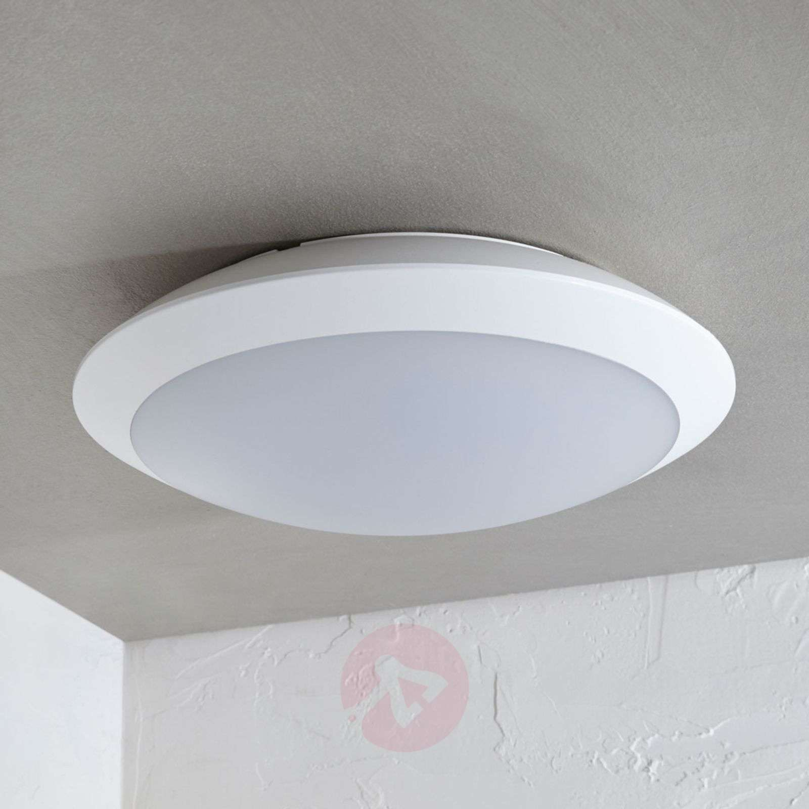 Awe Inspiring Naira Led Outdoor Ceiling Lamp White With Sensor Download Free Architecture Designs Jebrpmadebymaigaardcom