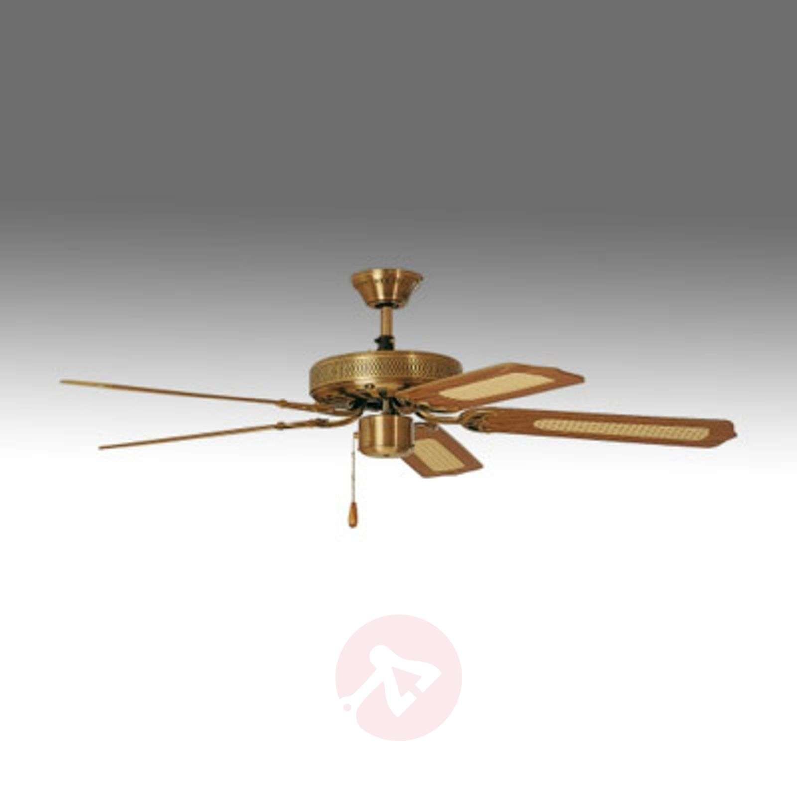 Paloma ceiling fan antique brasswood lights paloma ceiling fan antique brasswood 2513045 02 aloadofball Choice Image