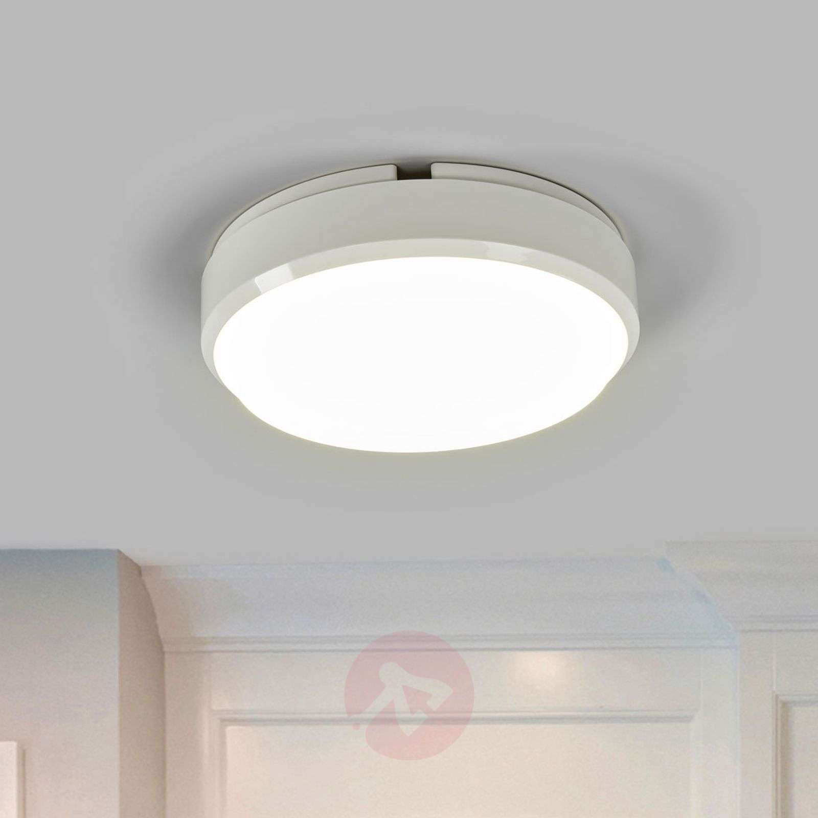 Round led ceiling light bulkhead with sensor lights round led ceiling light bulkhead with sensor 8559218 02 mozeypictures Gallery