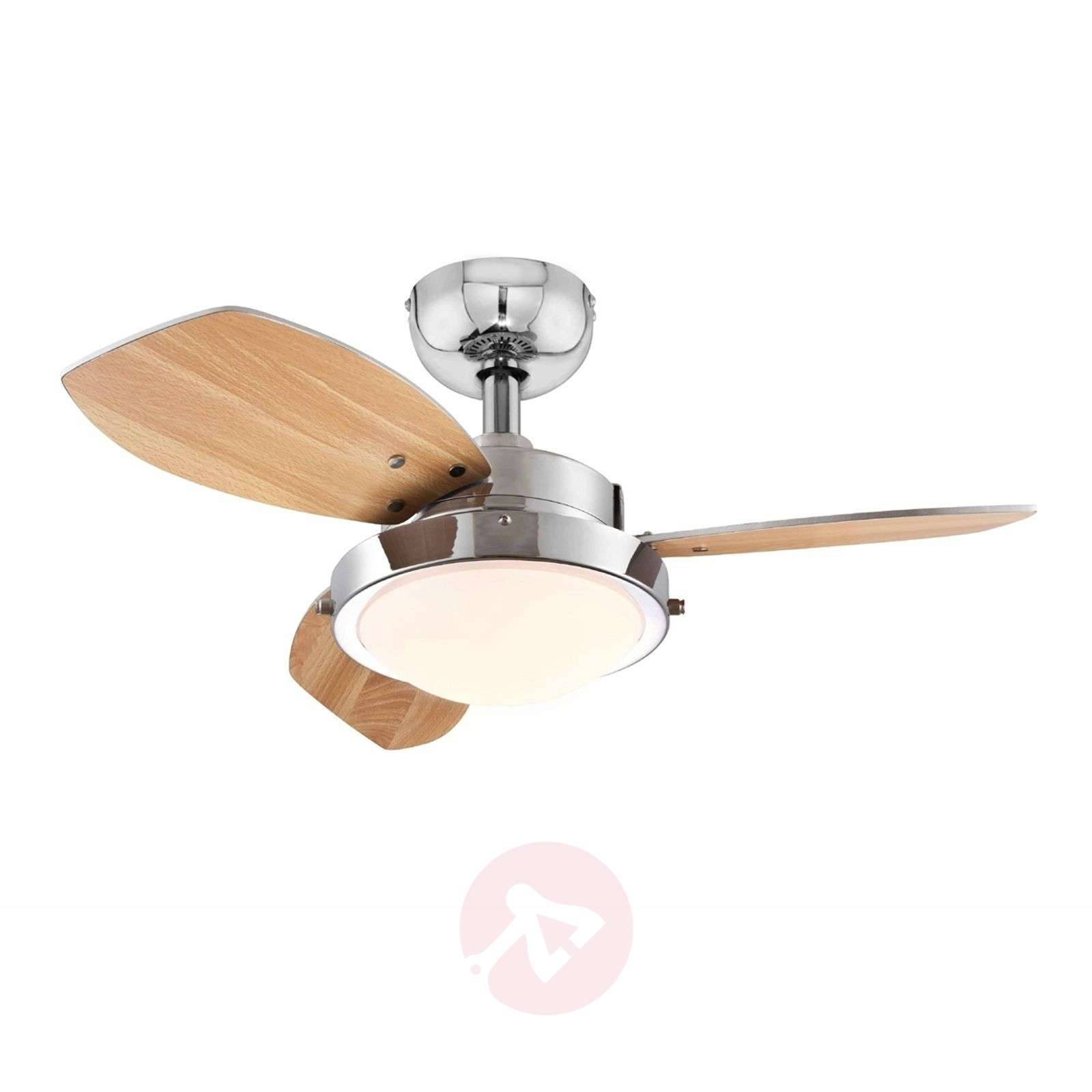 Wenge ceiling fan with halogen lamp wenge ceiling fan with halogen lamp 9602233 02 mozeypictures Choice Image