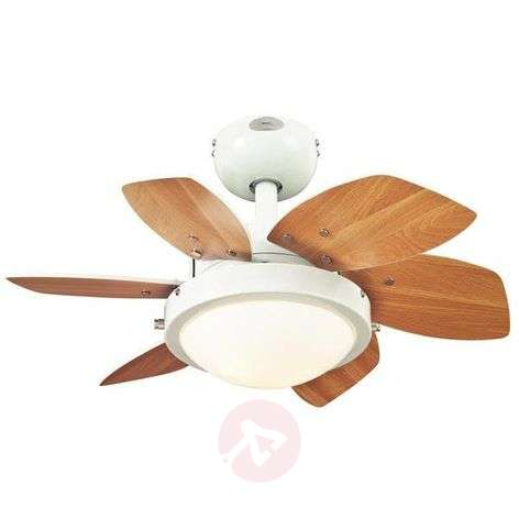 Ceiling Fan Quince With Light, White Beech