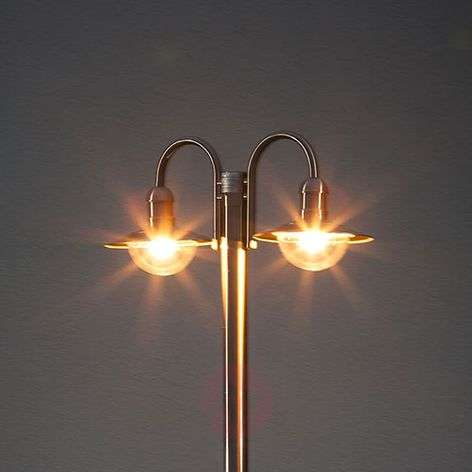 Damion Stainless Steel Mast Lamp with 2 Lamp Heads