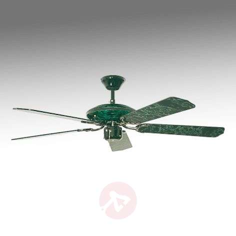 Buy ceiling fans without lighting online from lights espria ceiling fan black green marbled aloadofball Gallery