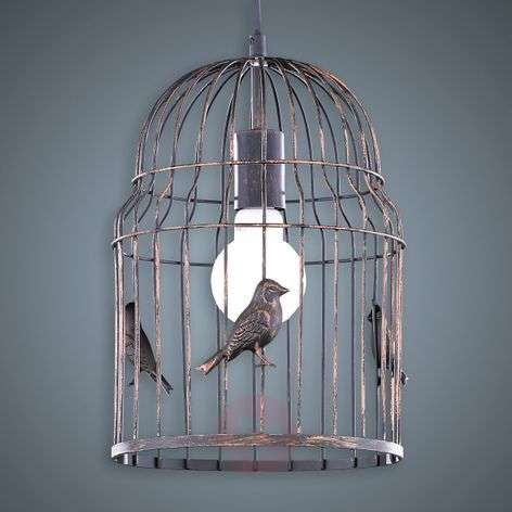 Hanging light Hansi in a birdcage look