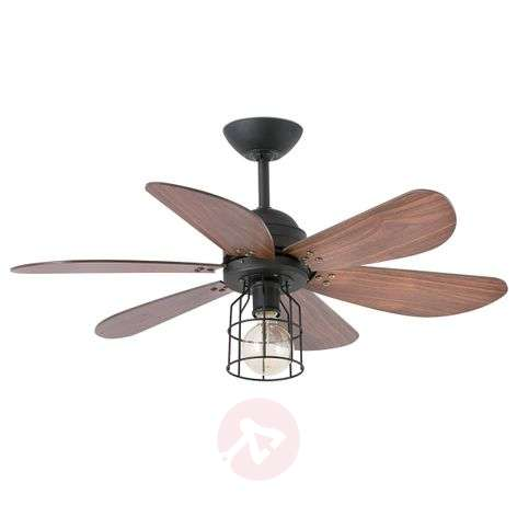 Buy ceiling fans with lighting online from lights light with a cage design ceiling fan chicago aloadofball Gallery