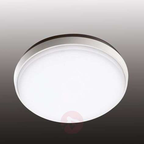Olly - LED outdoor light in simple white