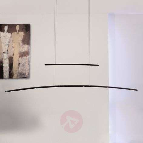 The height-adjustable Arco LED hanging light