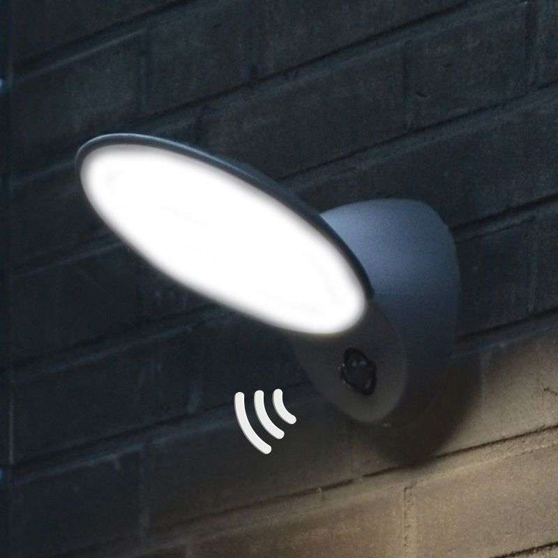 Tona LED Exterior Wall Light With Motion Sensor
